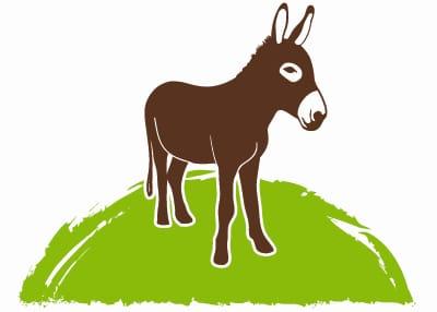 Verein Tier-Asyl Hübeli — Logo