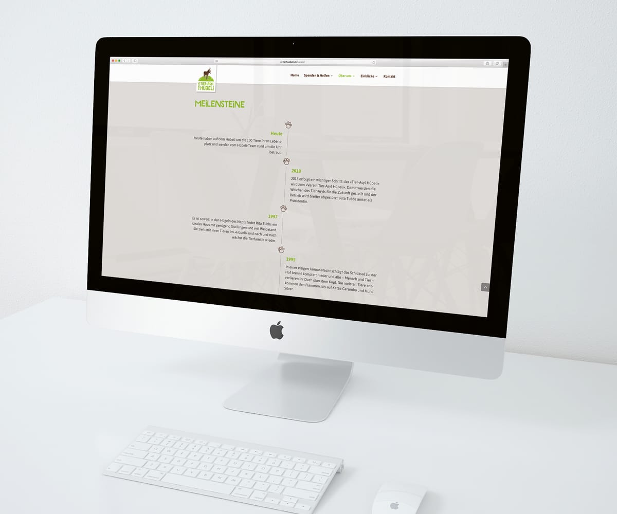 riyue Website auf Apple MacBook